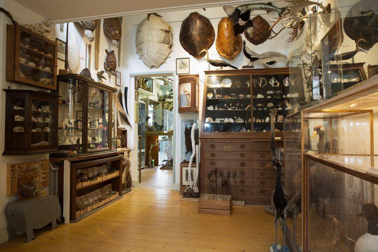 Natuurmuseum Klaas Nanninga